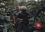 Image of 25th Infantry Division soldiers Vietnam Cu Chi, 1967, second 39 stock footage video 65675022783