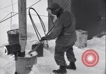 Image of activity in Sierra Greenland, 1954, second 31 stock footage video 65675022802