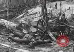 Image of 5th Marine Regiment, 1st Marine Division, in action against Japanese f Peleliu Palau Islands, 1944, second 31 stock footage video 65675022859