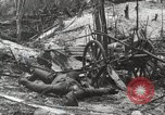Image of 5th Marine Regiment, 1st Marine Division, in action against Japanese f Peleliu Palau Islands, 1944, second 33 stock footage video 65675022859