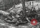 Image of 5th Marine Regiment, 1st Marine Division, in action against Japanese f Peleliu Palau Islands, 1944, second 34 stock footage video 65675022859