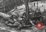 Image of 5th Marine Regiment, 1st Marine Division, in action against Japanese f Peleliu Palau Islands, 1944, second 35 stock footage video 65675022859