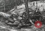 Image of 5th Marine Regiment, 1st Marine Division, in action against Japanese f Peleliu Palau Islands, 1944, second 36 stock footage video 65675022859