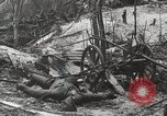 Image of 5th Marine Regiment, 1st Marine Division, in action against Japanese f Peleliu Palau Islands, 1944, second 37 stock footage video 65675022859