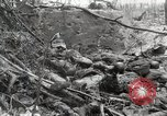 Image of 5th Marine Regiment, 1st Marine Division, in action against Japanese f Peleliu Palau Islands, 1944, second 38 stock footage video 65675022859