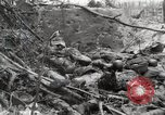 Image of 5th Marine Regiment, 1st Marine Division, in action against Japanese f Peleliu Palau Islands, 1944, second 39 stock footage video 65675022859