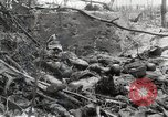 Image of 5th Marine Regiment, 1st Marine Division, in action against Japanese f Peleliu Palau Islands, 1944, second 40 stock footage video 65675022859
