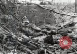 Image of 5th Marine Regiment, 1st Marine Division, in action against Japanese f Peleliu Palau Islands, 1944, second 41 stock footage video 65675022859