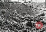 Image of 5th Marine Regiment, 1st Marine Division, in action against Japanese f Peleliu Palau Islands, 1944, second 42 stock footage video 65675022859