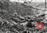 Image of 5th Marine Regiment, 1st Marine Division, in action against Japanese f Peleliu Palau Islands, 1944, second 43 stock footage video 65675022859