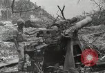 Image of 5th Marine Regiment, 1st Marine Division, in action against Japanese f Peleliu Palau Islands, 1944, second 48 stock footage video 65675022859