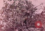 Image of United States Marines Peleliu Palau Islands, 1944, second 7 stock footage video 65675022865