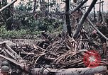 Image of United States Marines Peleliu Palau Islands, 1944, second 29 stock footage video 65675022865