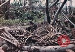 Image of United States Marines Peleliu Palau Islands, 1944, second 30 stock footage video 65675022865