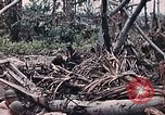 Image of United States Marines Peleliu Palau Islands, 1944, second 31 stock footage video 65675022865