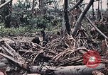 Image of United States Marines Peleliu Palau Islands, 1944, second 32 stock footage video 65675022865