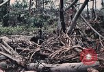Image of United States Marines Peleliu Palau Islands, 1944, second 33 stock footage video 65675022865