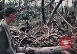 Image of United States Marines Peleliu Palau Islands, 1944, second 34 stock footage video 65675022865