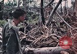 Image of United States Marines Peleliu Palau Islands, 1944, second 35 stock footage video 65675022865