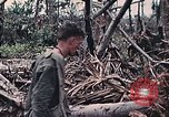 Image of United States Marines Peleliu Palau Islands, 1944, second 36 stock footage video 65675022865