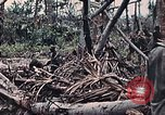 Image of United States Marines Peleliu Palau Islands, 1944, second 38 stock footage video 65675022865
