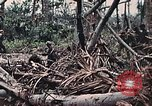 Image of United States Marines Peleliu Palau Islands, 1944, second 39 stock footage video 65675022865