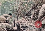 Image of United States Marines Peleliu Palau Islands, 1944, second 41 stock footage video 65675022865