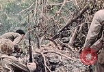 Image of United States Marines Peleliu Palau Islands, 1944, second 42 stock footage video 65675022865