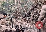 Image of United States Marines Peleliu Palau Islands, 1944, second 49 stock footage video 65675022865