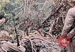 Image of United States Marines Peleliu Palau Islands, 1944, second 54 stock footage video 65675022865