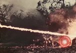 Image of 5th Marine Regiment Peleliu Palau Islands, 1944, second 62 stock footage video 65675022870