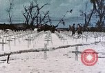 Image of U.S. Armed Forces Cemetery No. 1 Peleliu Palau Islands, 1944, second 41 stock footage video 65675022888