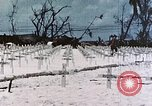 Image of U.S. Armed Forces Cemetery No. 1 Peleliu Palau Islands, 1944, second 42 stock footage video 65675022888