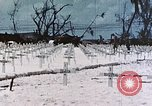 Image of U.S. Armed Forces Cemetery No. 1 Peleliu Palau Islands, 1944, second 43 stock footage video 65675022888