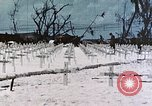 Image of U.S. Armed Forces Cemetery No. 1 Peleliu Palau Islands, 1944, second 44 stock footage video 65675022888