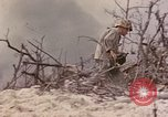 Image of US First Marine Division Peleliu Palau Islands, 1944, second 32 stock footage video 65675022901