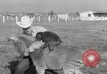 Image of Zonkey California United States USA, 1953, second 28 stock footage video 65675023023