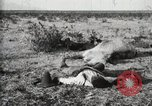 Image of federal soldiers Ojinaga Mexico, 1913, second 8 stock footage video 65675023029