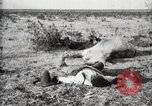 Image of federal soldiers Ojinaga Mexico, 1913, second 10 stock footage video 65675023029