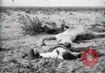 Image of federal soldiers Ojinaga Mexico, 1913, second 11 stock footage video 65675023029