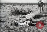 Image of federal soldiers Ojinaga Mexico, 1913, second 12 stock footage video 65675023029