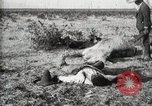 Image of federal soldiers Ojinaga Mexico, 1913, second 16 stock footage video 65675023029