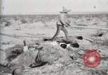 Image of federal soldiers Ojinaga Mexico, 1913, second 29 stock footage video 65675023029