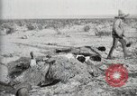 Image of federal soldiers Ojinaga Mexico, 1913, second 30 stock footage video 65675023029