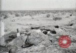 Image of federal soldiers Ojinaga Mexico, 1913, second 31 stock footage video 65675023029