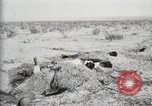 Image of federal soldiers Ojinaga Mexico, 1913, second 32 stock footage video 65675023029