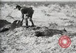 Image of federal soldiers Ojinaga Mexico, 1913, second 34 stock footage video 65675023029