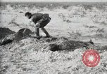 Image of federal soldiers Ojinaga Mexico, 1913, second 35 stock footage video 65675023029