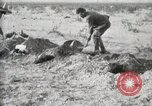 Image of federal soldiers Ojinaga Mexico, 1913, second 38 stock footage video 65675023029