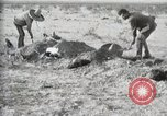 Image of federal soldiers Ojinaga Mexico, 1913, second 39 stock footage video 65675023029